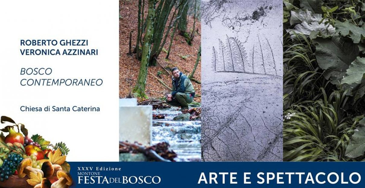 BOSCO CONTEMPORANEO