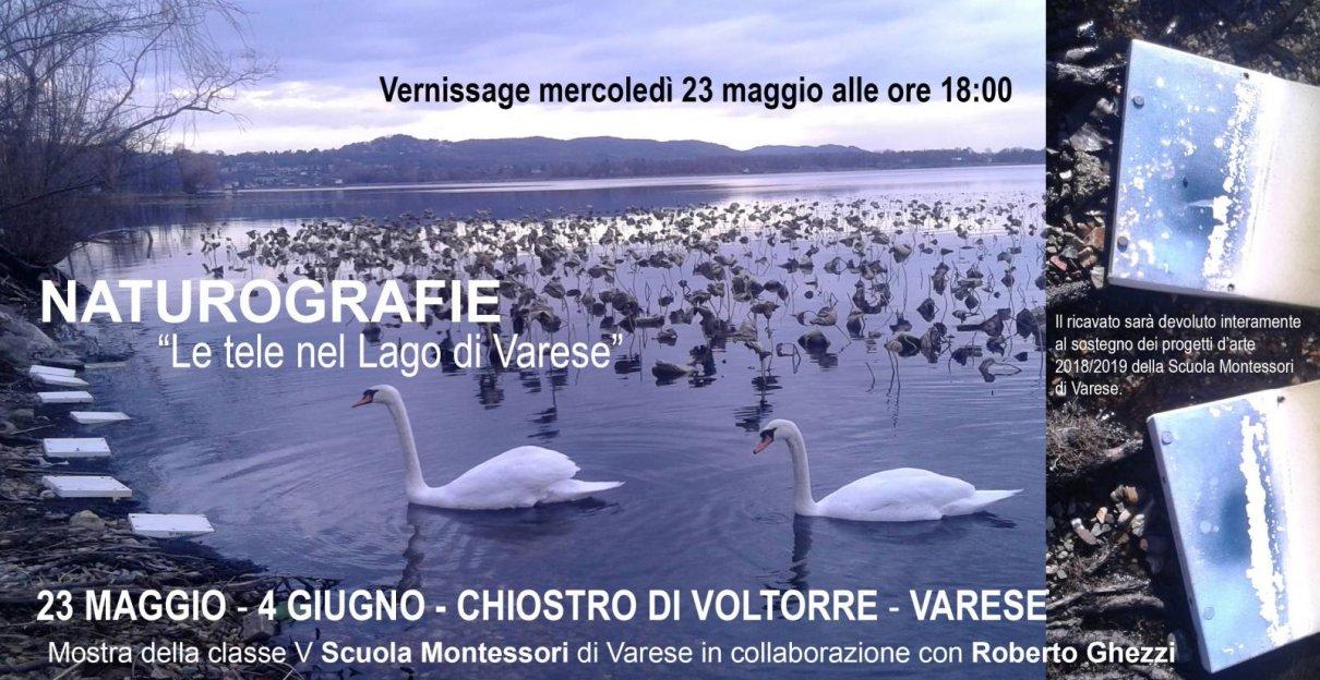 Naturografie nel lago di Varese