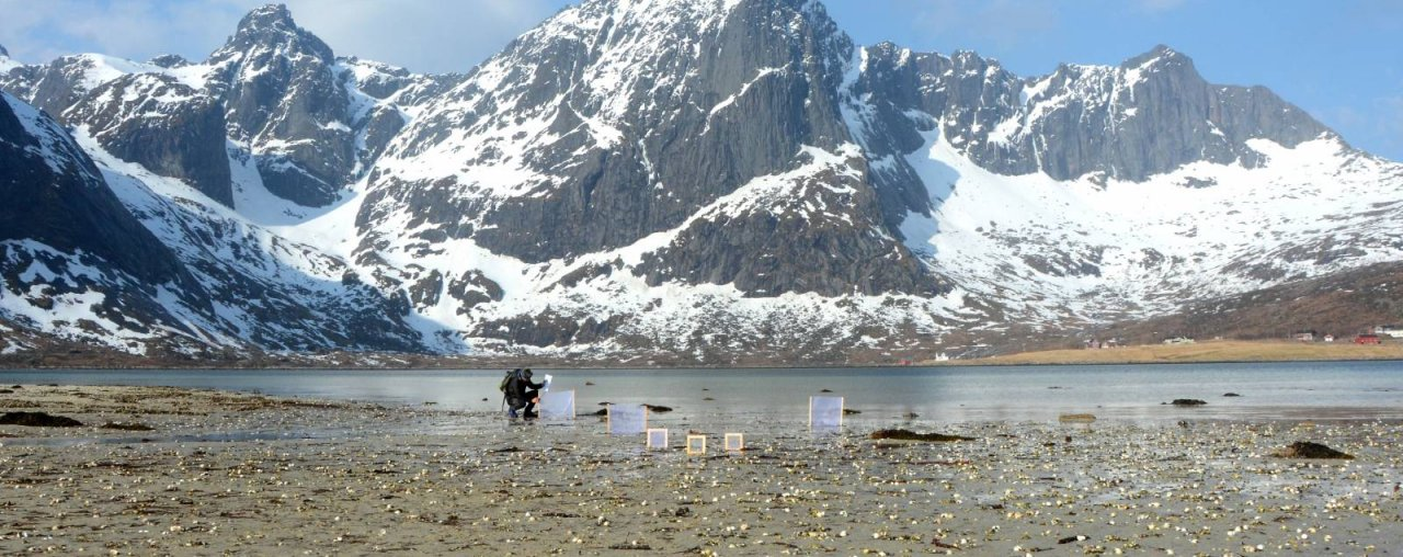 LOFOTEN ISLANDS – NORWAY   : ARTIST IN RESIDENCE