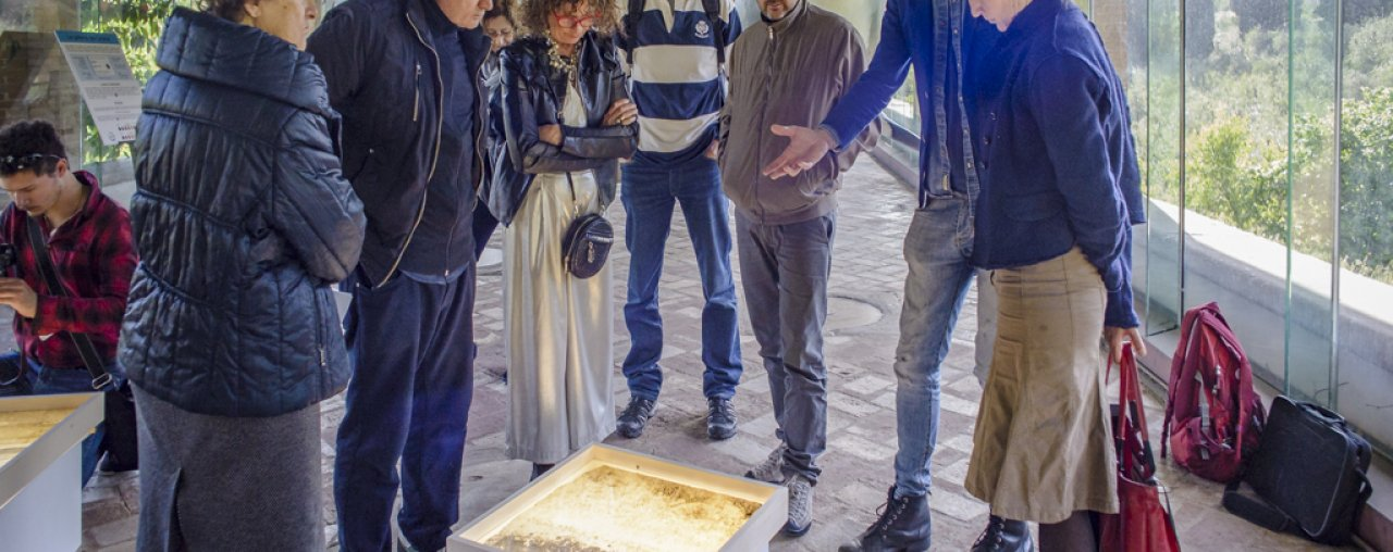NATUROGRAFIE – SOLO SHOW AT  MUSEUM OF NATURAL HISTORY OF THE UNIVERSITY OF PISA